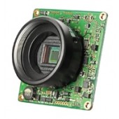 Watec W01CDB3 Board Camera Unit